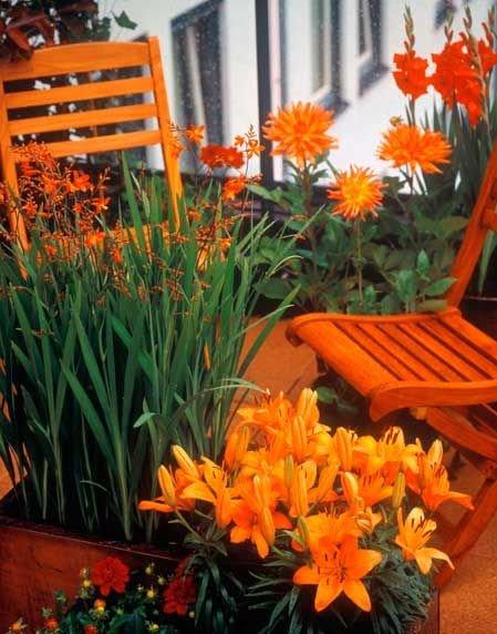 ... balkont is álmodhatunk magunknak narancsszínben  néhány megfelelő  árnyalatú szék 8b61a23d3a